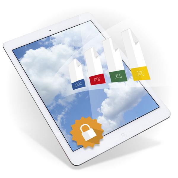 Núvol privat de documents per a empreses