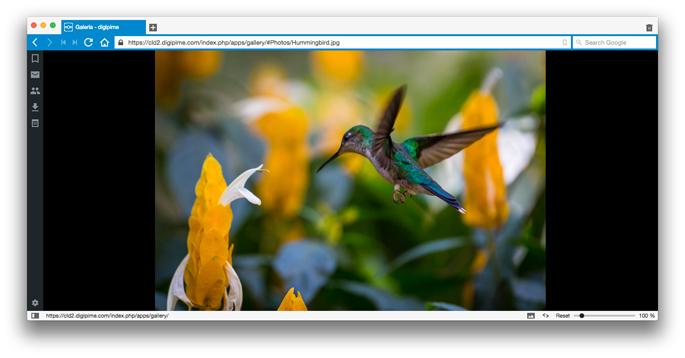 Visualització de fotografies en galeria